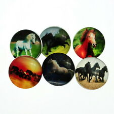 12PCs Snap Buttons Fit DIY Bracelets Horse Pattern Round Mixed 18mm