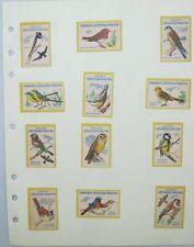 12 Czechoslovakian Match Box Labels Birds Chraňte užitečné ptactvo