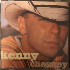 When the Sun Goes Down by Kenny Chesney (CD, Feb-2004, BNA)