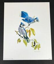 "David Plank 1974 Donald Art Blue jay Birds Litho Paper Print No 8062 8"" x 10"""