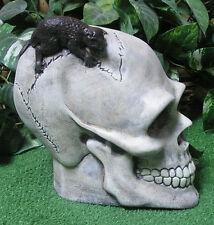 Skeleton Skull Rat Monster Latex Fiberglass Production Mold Concrete Plaster