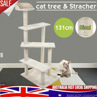 131cm Cat Scratching Post Tree Gym House Condo Furniture Scratcher Pole Toy