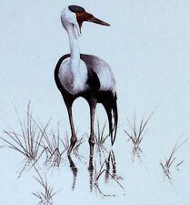 WADER OF THE MALAWI WWF Birds BIRD ENVELOPE Premier Day 1° FDC 497