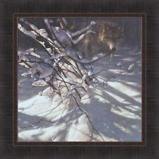 Out Of The Darkness by Collin Bogle 23x23 Framed Art Timber Wolf Winter Snow