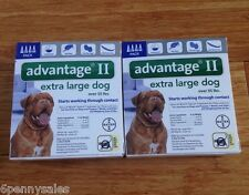 K9 Advantage II Flea Lice Medicine Extra Large Dogs XL K-9 8 Month Supply 55-100