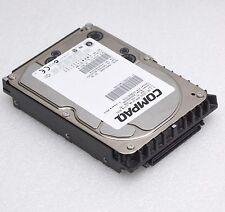 9 GB SCSI SCA FESTPLATTE MAN3184MC COMPAQ p/n CA05904-B01200P9 100% 80-PIN #P12