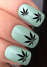 NAIL ART SET #617 x24 CANNABIS HASH LEAF WATER TRANSFER DECALS STICKERS