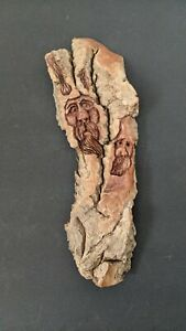 Vntg Hand Carved Signed Wood Spirit of 2 Old Man Faces Tree Driftwood Sculpture