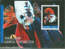 UGANDA 2014 DOMESTIC ANIMALS  SIAMESE FIGHTING FISH  SOUVENIR SHEET  MINT NH