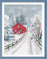 Counted Cross Stitch Kit OVEN - Wizard of winter