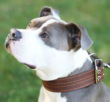 """Genuine Leather Dog Collar, Padded, 1.5"""" Wide. Fits 14""""-18"""" Neck Size, Amstaff"""