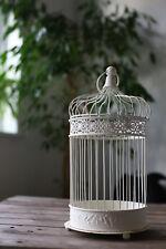 FILO di grandi dimensioni Shabby Chic Vintage Crema Effetto Invecchiato Gabbia Uccellini Arredamento Matrimonio