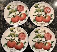 """Beautiful NEW CERAMICA CUORE MADE IN ITALY TOMATOES  SET OF 4 SALAD PLATES 9"""""""