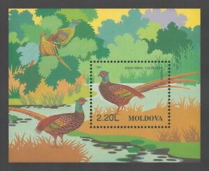 Moldova 1996 Birds Common Pheasant MNH stamp Block