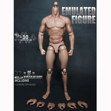 "New 12"" Muscular Action Figure Body 1/6 Scale For 1/6 Scale Hot Toys Head Sculpt"