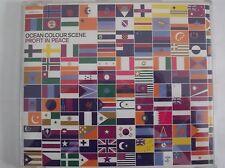 Ocean Colour Scene Profit In Peace UK CD Single EX (Color)