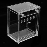 Pet Reptile Cage Feeding Breeding Box for Spider Insect Lizard Amphibians