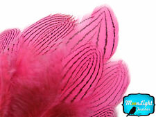 1 Dozen Pink Silver Pheasant Plumage Barred Feathers Fly Tying Jewelry Costume
