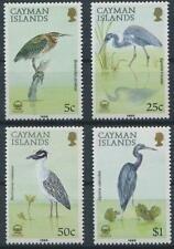 BIRD227 -  BIRDS STAMPS CAYMAN ISLANDS 1988 HERON/EGRETTA  MNH