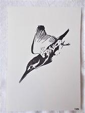 A4 Bolígrafo Marcador de arte dibujo pájaro Martín Pescador de animales un cartel