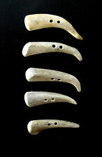 """ANTLER BUTTONS,2 1/2""""TOGGLES,TINES,SHEARLING COATS,5 CURVED HOOKED PIECES,212-22"""