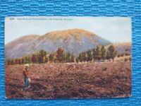 Flagstaff, AZ, Lava Beds and Sunset Crater, PC Postcard