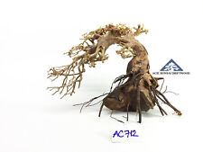 Bonsai Driftwood Over Rock Moss Tree Shrimp Underwater Landscape -Size M- AC712