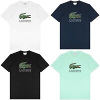 Lacoste T-Shirt - Lacoste Big Croc Logo Tee - TH6386 - Various Colours - BNWT