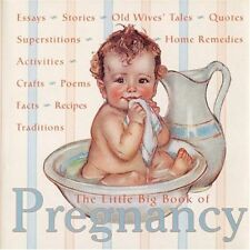 The Little Big Book of Pregnancy (Little Big Books (Welcome)) by Fried, Katrina