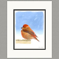 Scarlet Tanager Wild Bird Original Art Print 8x10 Matted to 11x14
