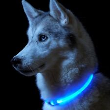 Auraglow Super Bright Red LED Light up Dog Collar High Visibility Flashing