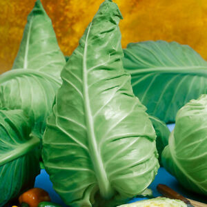 Green Cabbage Seeds Wheelers Imperial x 500 seeds Heritage Sweetheart Vegetable