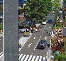 Busch 6039 Betonstraße 1m / 80 Mm