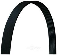 Dayco DriveRite Economy Serpentine Belt 5060795DR 12 Month 12,000 Mile Warranty