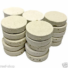 25 LARGE Reef Frag Discs Cured for Live Coral Propagation FREE USA SHIPPING!
