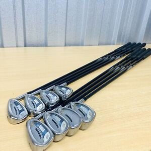 Mens R/H Bay Hill by Palmer Stainless Steel Irons 3-SW Reg Graphite Shafts VGC