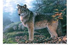 Jerry Gadamus ' Wolves ' modern Rare new card