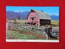 Vintage Original Montana Horse Ranch Scene Uncirculated Postcard