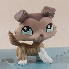 "LPS #1330 FIGURE COLLECTION LIGHT CHOCOLATE CREAM DOG 3"" LITTLEST PET SHOP"