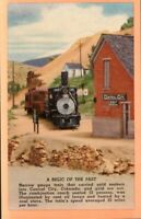 Colorado CO Central City Relic of the Past Narrow Gauge Train Postcard Old View