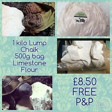 1kg Lump Chalk, 500g Limestone flour, Calcium For Tortoises FREE SEEDS