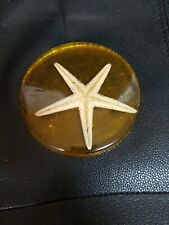 """Acrylic Lucite Real Star Fish Paperweight Handmade 4 3/4"""" Round 1/2""""T vintage"""