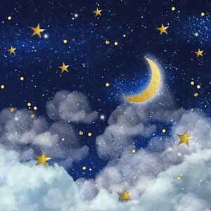4 x Single Paper Table Napkin/3-Ply/Decoupage/Christmas/Stars/Sky/Midnight Moon