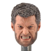 "1:6 Scale Wolverine Angry Face Version Head Model Toy For 12"" Male Figure Body"