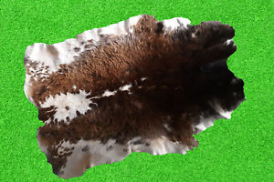 """New Cowhide Rugs Hair On COW HIDE Rugs Area Cow Skin Leather Rugs (42"""" x 35"""")"""