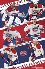 MONTREAL CANADIENS - 2015 TEAM COLLAGE POSTER - 22x34 NHL HOCKEY 13813