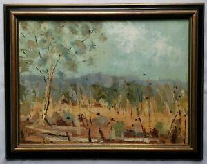 Original Framed Oil Painting - Nagambie Landcape by Stephen Phillis