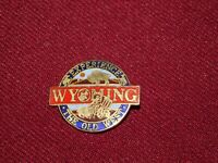VINTAGE PIN PINBACK WYOMING EXPERIENCE THE OLD WEST STAGECOACH BUFFALO