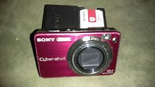 Sony Cybershot DSCW170 10.1MP Digital Camera with 5x Optical Zoom Zeiss  Pink