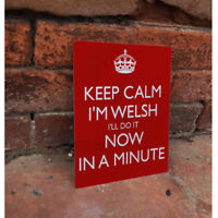 Keep Calm welsh Now Minute - VINTAGE ENAMEL METAL TIN SIGN WALL PLAQUE